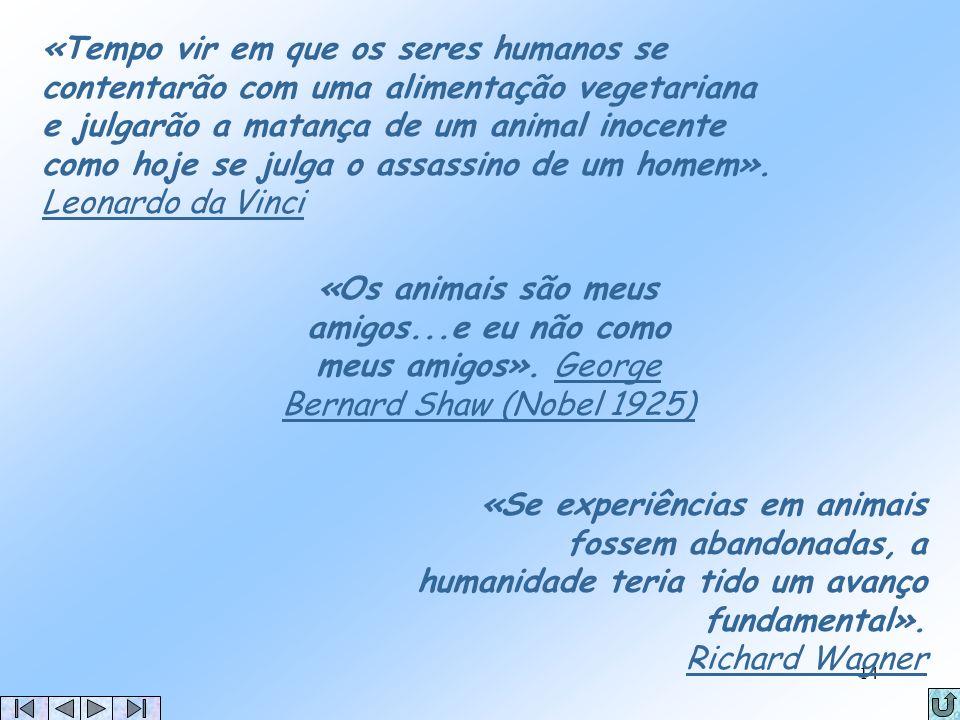 13 Bibliografia Vegetarianismo http://vegetarianismo.blogs.sapo.pt/ ; Viva Vegetariano http://www.vivanaturalmente.pt/ ; Por que algumas pessoas são v