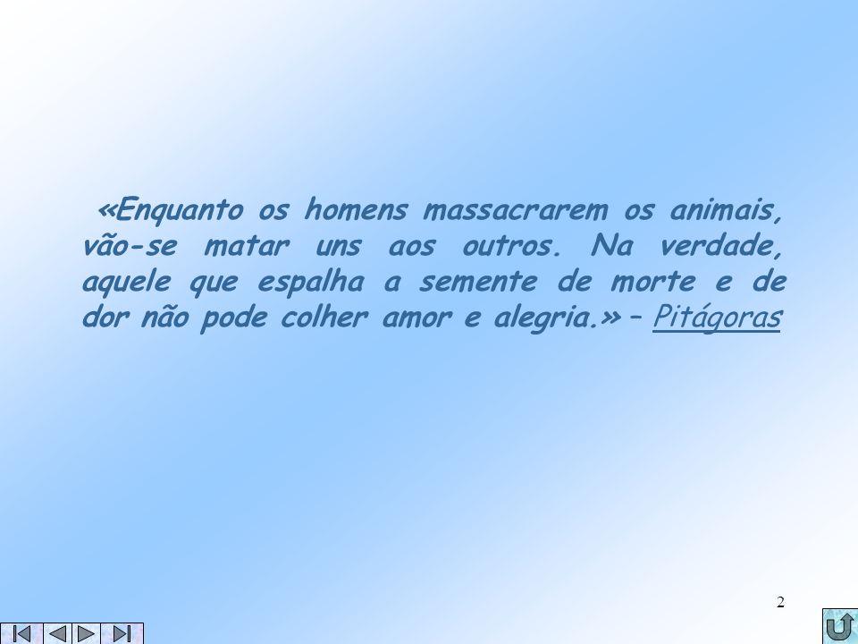 Verónica Ferreira8 de Dezembro de 20041 A Filosofia do Vegetarianismo Universidade do Algarve Ciências da Comunicação Introdução à Informática em Comu