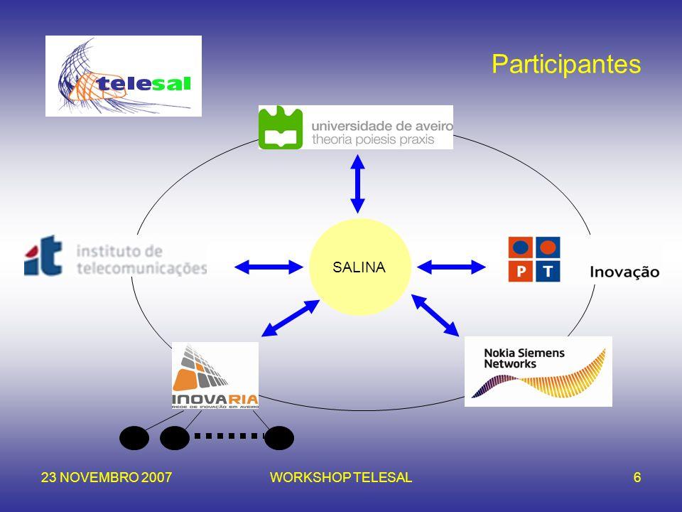 23 NOVEMBRO 2007WORKSHOP TELESAL6 Participantes SALINA