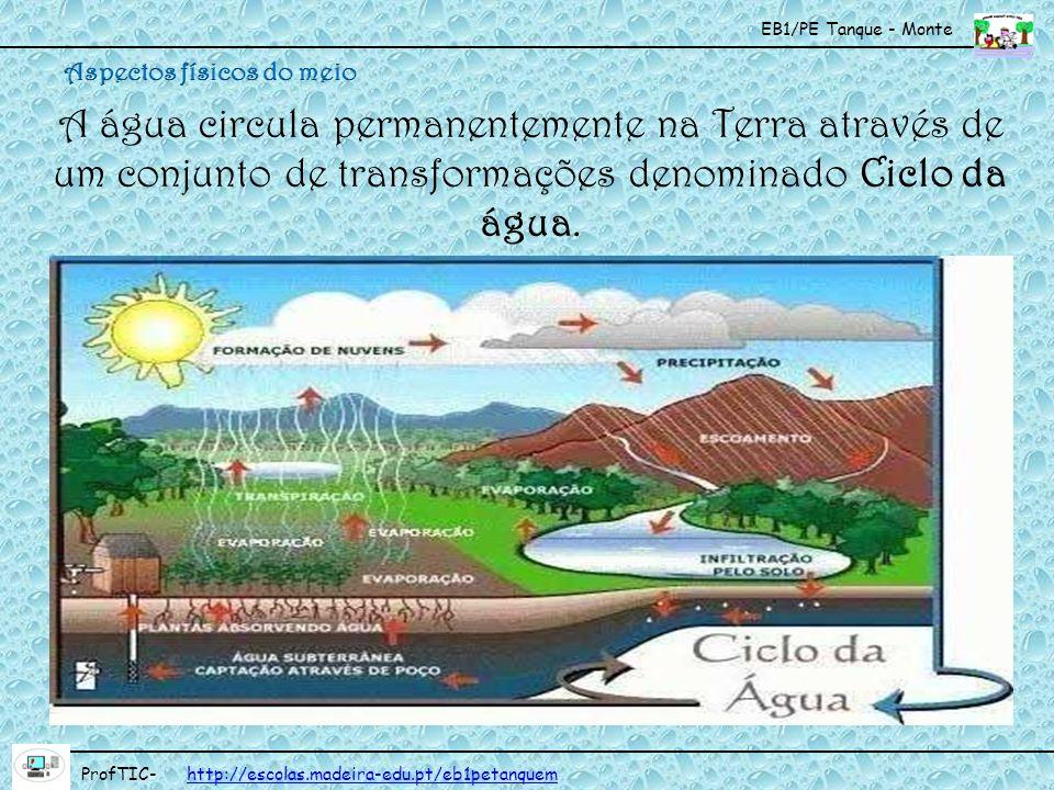 EB1/PE Tanque - Monte ProfTIC- http://escolas.madeira-edu.pt/eb1petanquemhttp://escolas.madeira-edu.pt/eb1petanquem A água circula permanentemente na