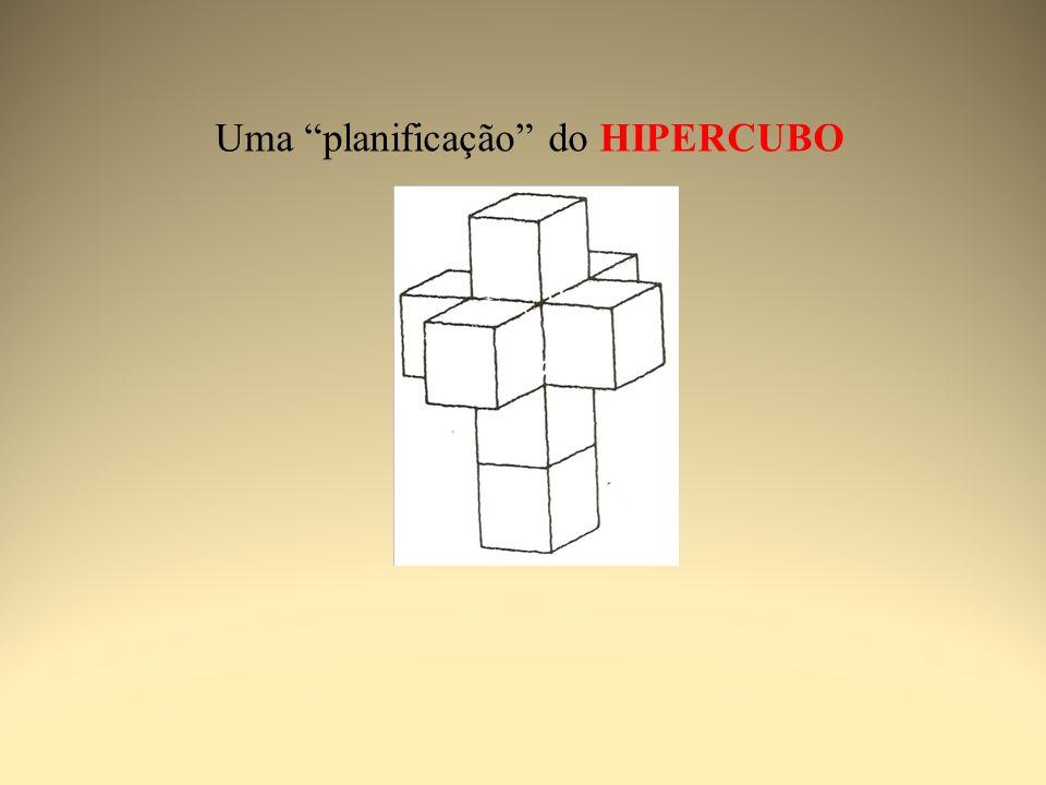 Percepção em Mondrian Semir Zeki, Inner Visions