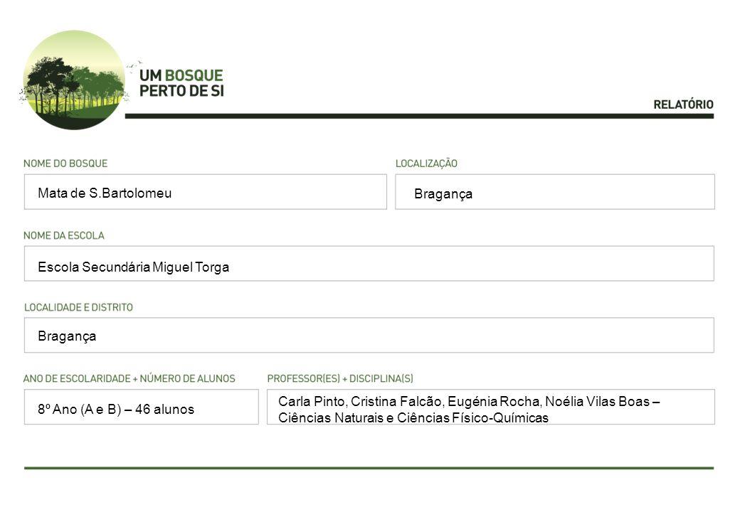 Bragança Escola Secundária Miguel Torga Bragança Carla Pinto, Cristina Falcão, Eugénia Rocha, Noélia Vilas Boas – Ciências Naturais e Ciências Físico-