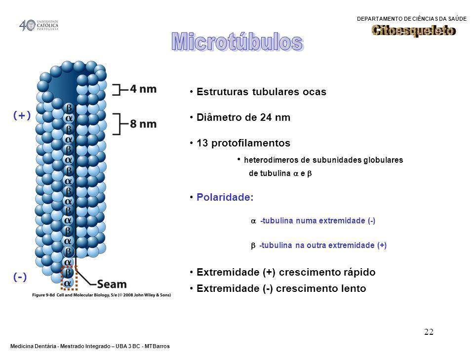 DEPARTAMENTO DE CIÊNCIAS DA SAÚDE Medicina Dentária - Mestrado Integrado – UBA 3 BC - MTBarros 22 Estruturas tubulares ocas Diâmetro de 24 nm 13 proto