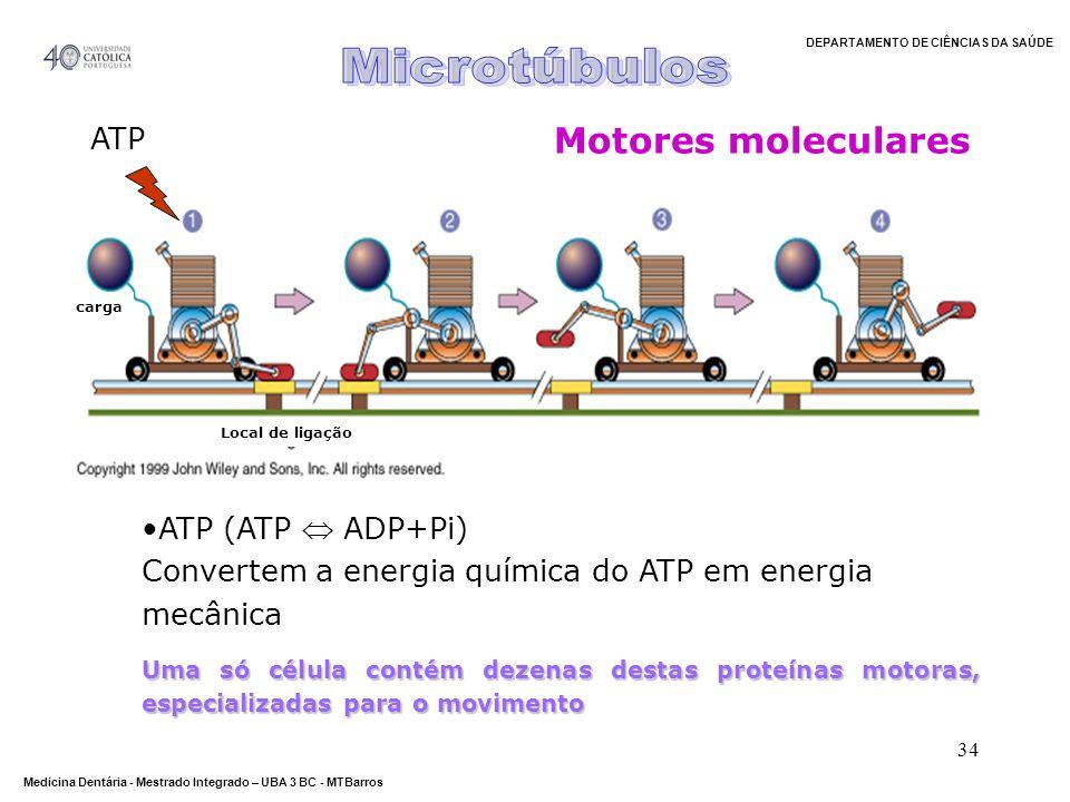 DEPARTAMENTO DE CIÊNCIAS DA SAÚDE Medicina Dentária - Mestrado Integrado – UBA 3 BC - MTBarros 34 Motores moleculares carga Local de ligação ATP (ATP
