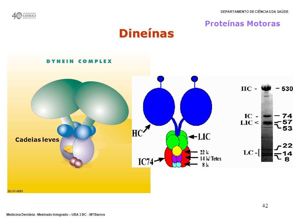 DEPARTAMENTO DE CIÊNCIAS DA SAÚDE Medicina Dentária - Mestrado Integrado – UBA 3 BC - MTBarros 42 Proteínas Motoras Cadeias leves Dineínas