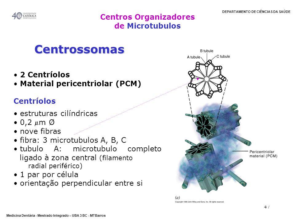 DEPARTAMENTO DE CIÊNCIAS DA SAÚDE Medicina Dentária - Mestrado Integrado – UBA 3 BC - MTBarros 47 Centrossomas 2 Centríolos Material pericentriolar (P