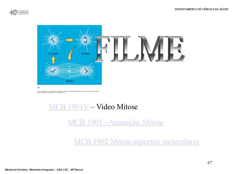 DEPARTAMENTO DE CIÊNCIAS DA SAÚDE Medicina Dentária - Mestrado Integrado – UBA 3 BC - MTBarros 67 MCB 1901VMCB 1901V – Video Mitose MCB 1902 Mitose-as