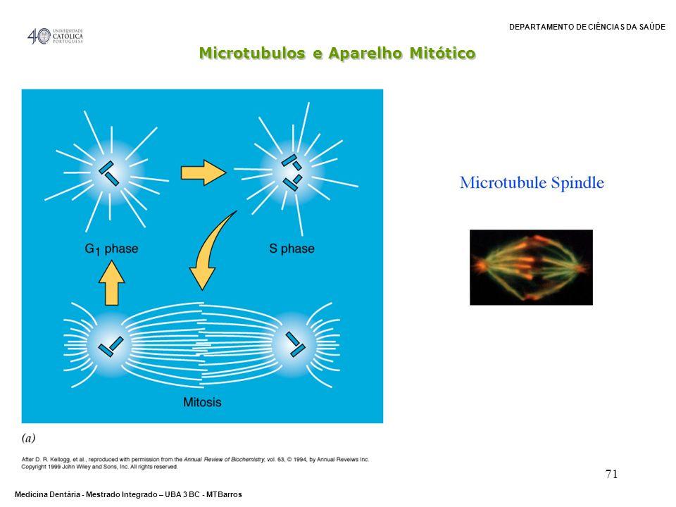 DEPARTAMENTO DE CIÊNCIAS DA SAÚDE Medicina Dentária - Mestrado Integrado – UBA 3 BC - MTBarros 71 - Microtubulos e Aparelho Mitótico