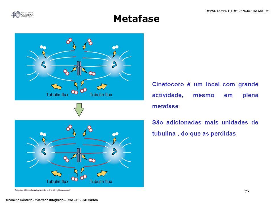 DEPARTAMENTO DE CIÊNCIAS DA SAÚDE Medicina Dentária - Mestrado Integrado – UBA 3 BC - MTBarros 73 Metafase Cinetocoro é um local com grande actividade