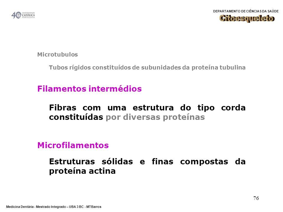 DEPARTAMENTO DE CIÊNCIAS DA SAÚDE Medicina Dentária - Mestrado Integrado – UBA 3 BC - MTBarros 76 Microtubulos Tubos rígidos constituídos de subunidad
