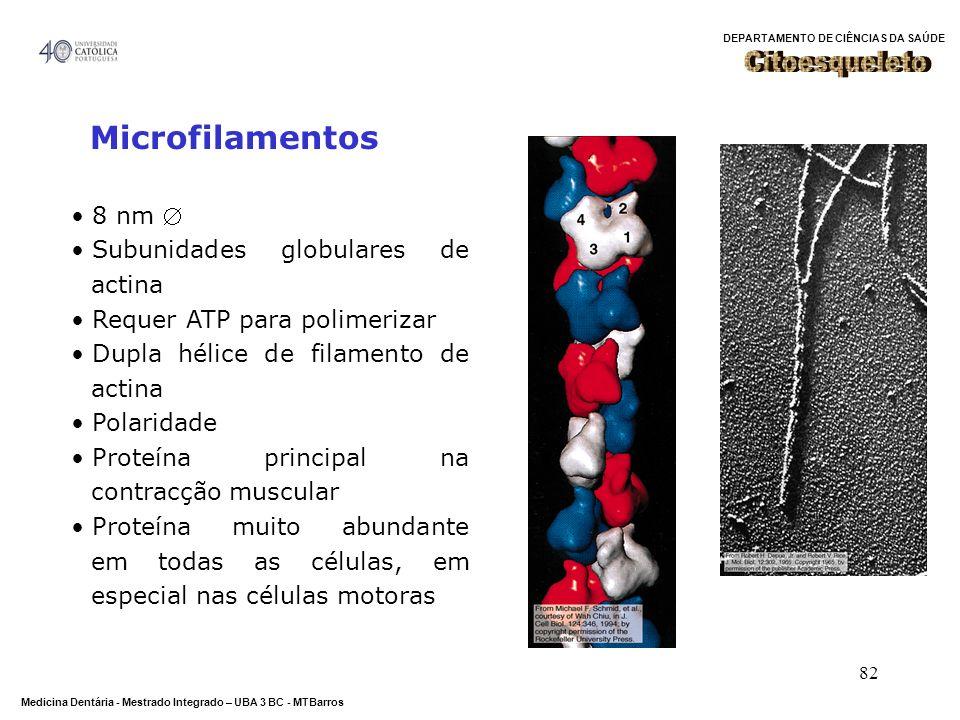 DEPARTAMENTO DE CIÊNCIAS DA SAÚDE Medicina Dentária - Mestrado Integrado – UBA 3 BC - MTBarros 82 Microfilamentos 8 nm Subunidades globulares de actin