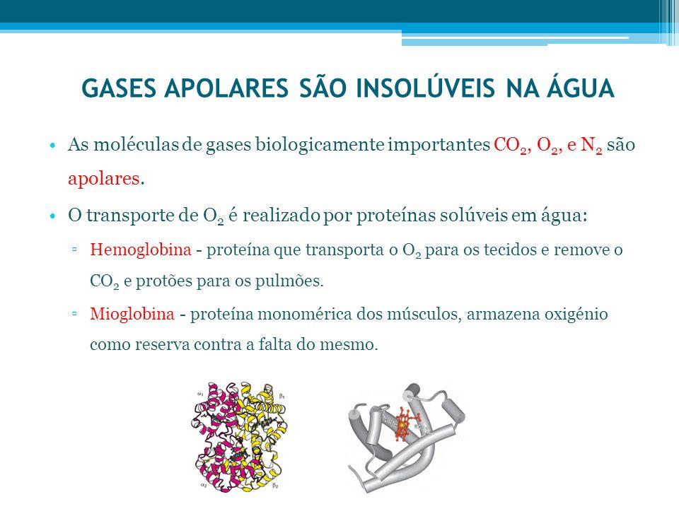 GASES APOLARES SÃO INSOLÚVEIS NA ÁGUA As moléculas de gases biologicamente importantes CO 2, O 2, e N 2 são apolares. O transporte de O 2 é realizado