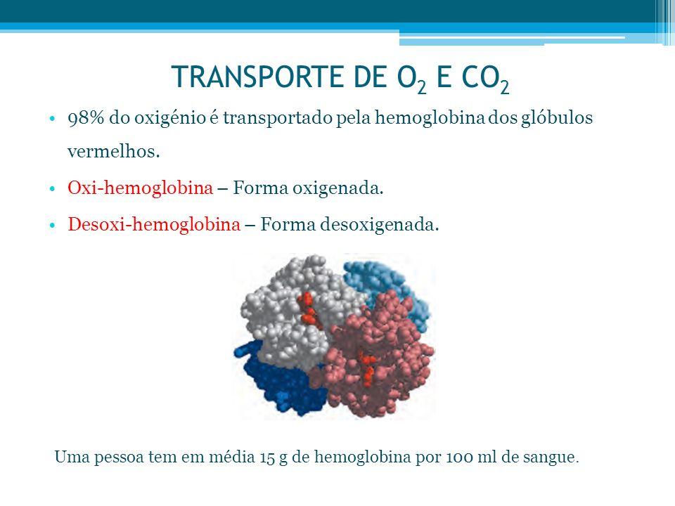 TRANSPORTE DE O 2 E CO 2 98% do oxigénio é transportado pela hemoglobina dos glóbulos vermelhos. Oxi-hemoglobina – Forma oxigenada. Desoxi-hemoglobina