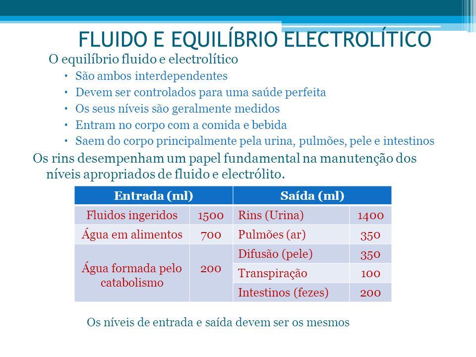 FLUIDO E EQUILÍBRIO ELECTROLÍTICO O equilíbrio fluido e electrolítico São ambos interdependentes Devem ser controlados para uma saúde perfeita Os seus