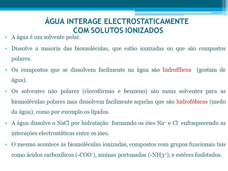 ÁGUA INTERAGE ELECTROSTATICAMENTE COM SOLUTOS IONIZADOS A água é um solvente polar. Dissolve a maioria das biomoléculas, que estão ionizadas ou que sã