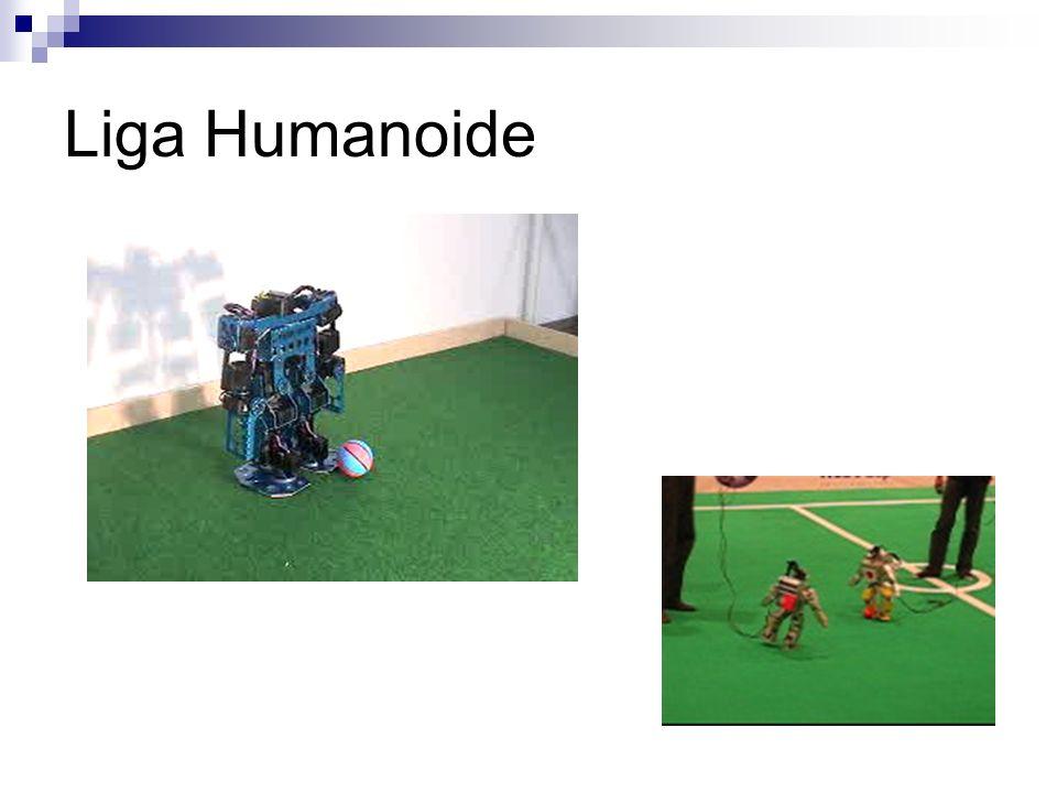 Liga Humanoide
