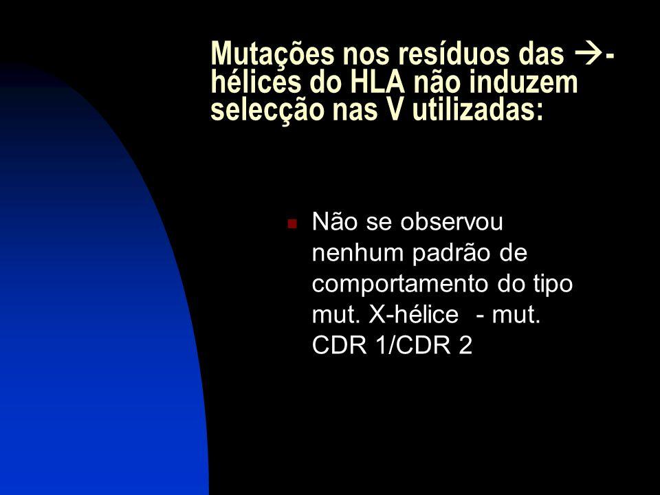 Mutações nos resíduos das - hélices do HLA não induzem selecção nas V utilizadas: Não se observou nenhum padrão de comportamento do tipo mut. X-hélice