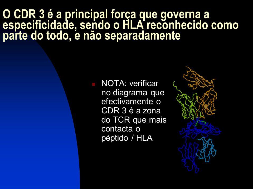 O CDR 3 é a principal força que governa a especificidade, sendo o HLA reconhecido como parte do todo, e não separadamente NOTA: verificar no diagrama
