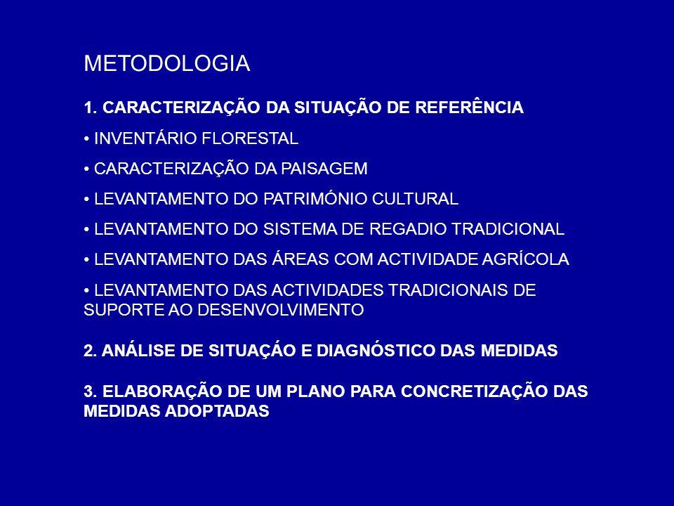 METODOLOGIA 1. CARACTERIZAÇÃO DA SITUAÇÃO DE REFERÊNCIA INVENTÁRIO FLORESTAL CARACTERIZAÇÃO DA PAISAGEM LEVANTAMENTO DO PATRIMÓNIO CULTURAL LEVANTAMEN