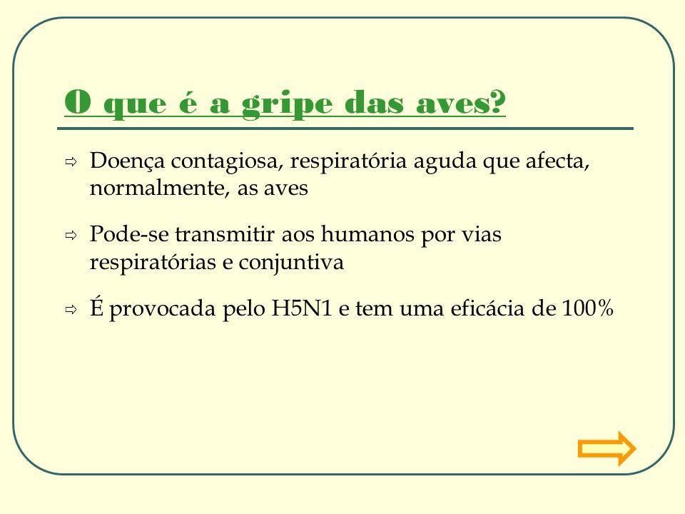 O que é a gripe das aves? Doença contagiosa, respiratória aguda que afecta, normalmente, as aves Pode-se transmitir aos humanos por vias respiratórias