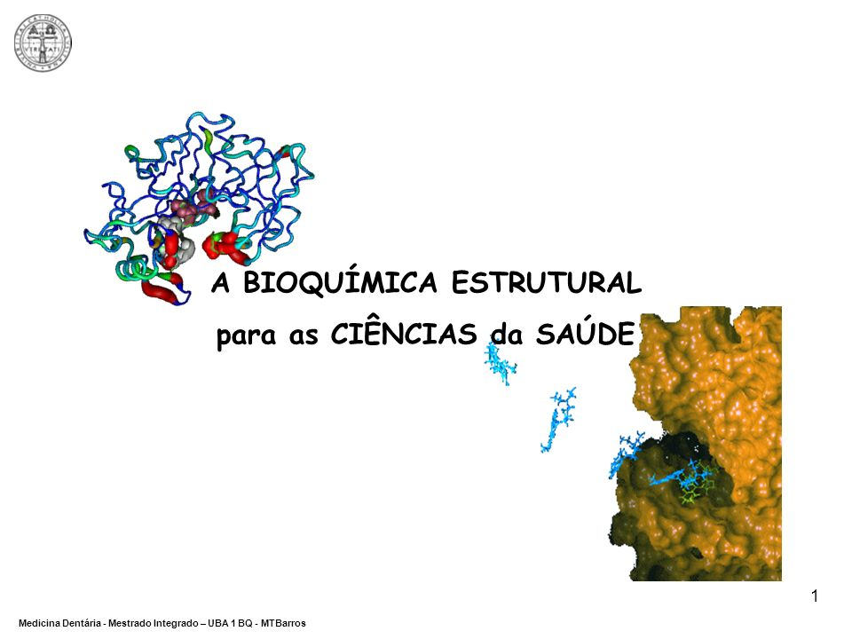 DEPARTAMENTO DE CIÊNCIAS DA SAÚDE Medicina Dentária - Mestrado Integrado – UBA 1 BQ - MTBarros 1 A BIOQUÍMICA ESTRUTURAL para as CIÊNCIAS da SAÚDE