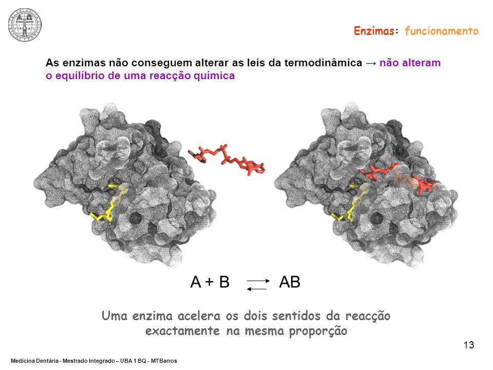 DEPARTAMENTO DE CIÊNCIAS DA SAÚDE Medicina Dentária - Mestrado Integrado – UBA 1 BQ - MTBarros 13 As enzimas não conseguem alterar as leis da termodin