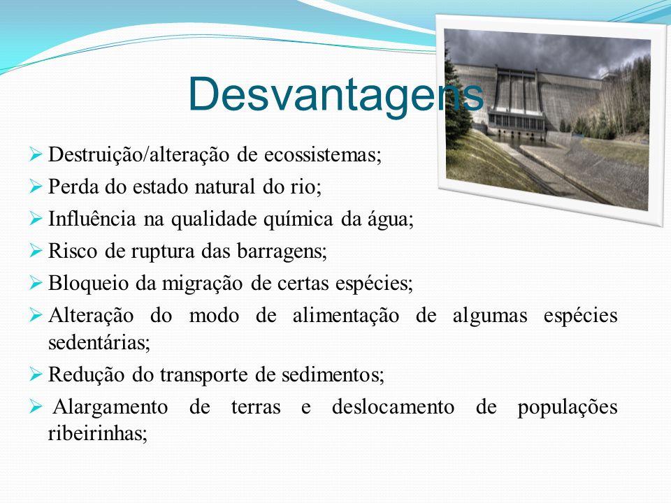 Desvantagens Destruição/alteração de ecossistemas; Perda do estado natural do rio; Influência na qualidade química da água; Risco de ruptura das barra