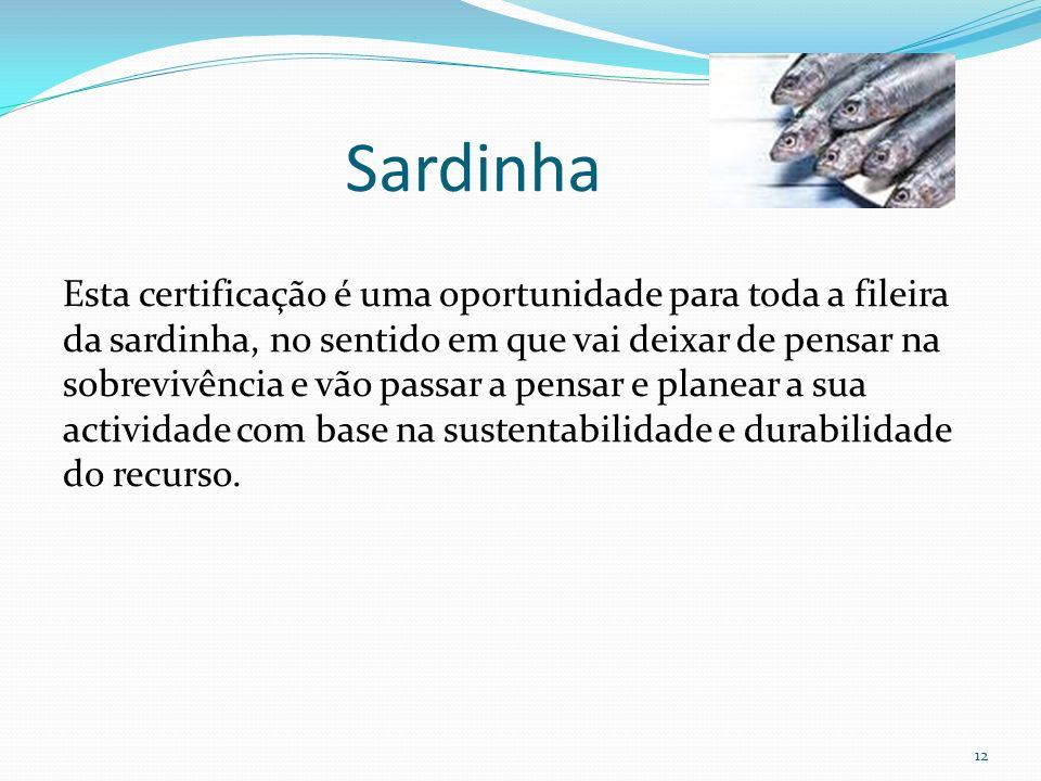 12 Esta certificação é uma oportunidade para toda a fileira da sardinha, no sentido em que vai deixar de pensar na sobrevivência e vão passar a pensar