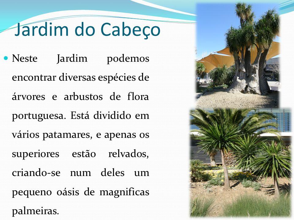 Jardim do Cabeço Neste Jardim podemos encontrar diversas espécies de árvores e arbustos de flora portuguesa. Está dividido em vários patamares, e apen