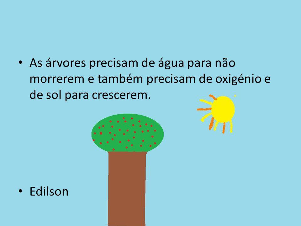 As árvores precisam de água para não morrerem e também precisam de oxigénio e de sol para crescerem. Edilson