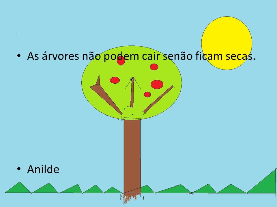 As árvores não podem cair senão ficam secas. Anilde