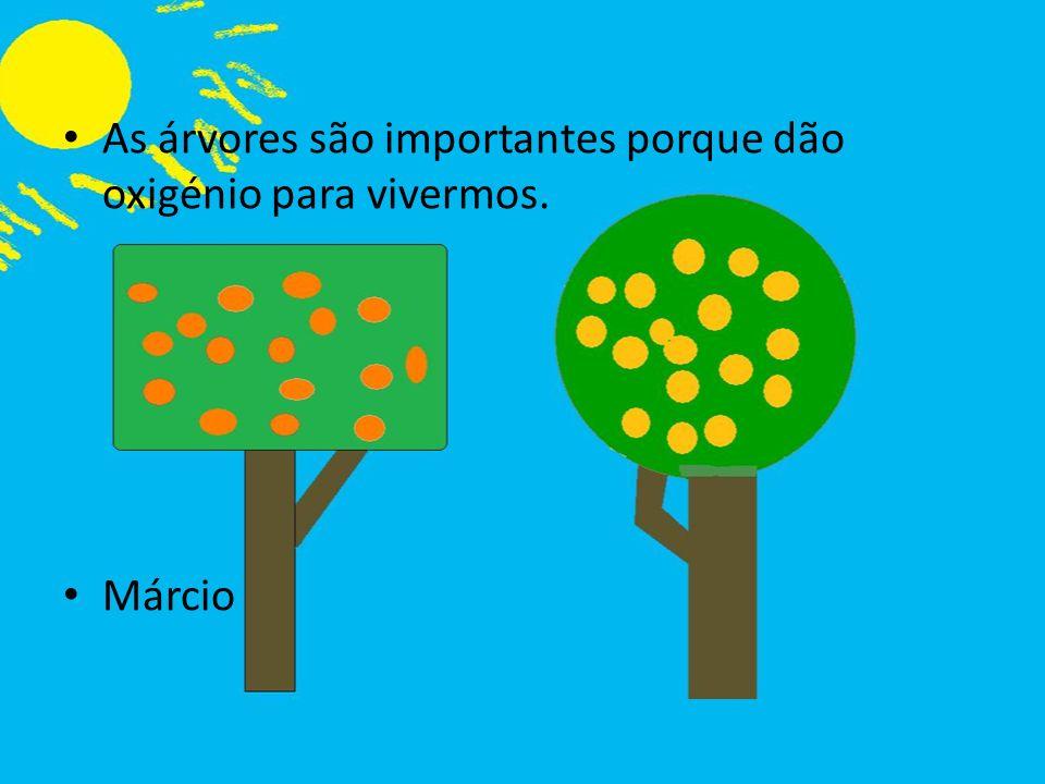 As árvores são importantes porque dão oxigénio para vivermos. Márcio
