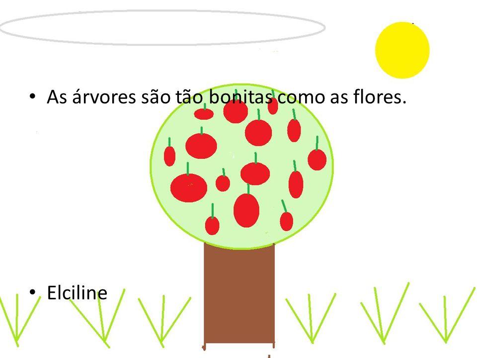 As árvores são tão bonitas como as flores. Elciline