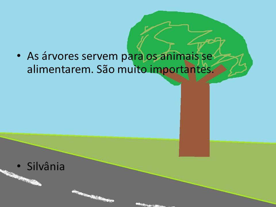 As árvores servem para os animais se alimentarem. São muito importantes. Silvânia