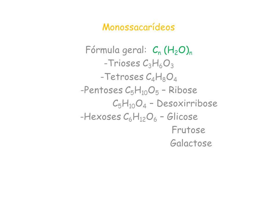 Monossacarídeos Fórmula geral: C n (H 2 O) n -Trioses C 3 H 6 O 3 -Tetroses C 4 H 8 O 4 -Pentoses C 5 H 10 O 5 – Ribose C 5 H 10 O 4 – Desoxirribose -