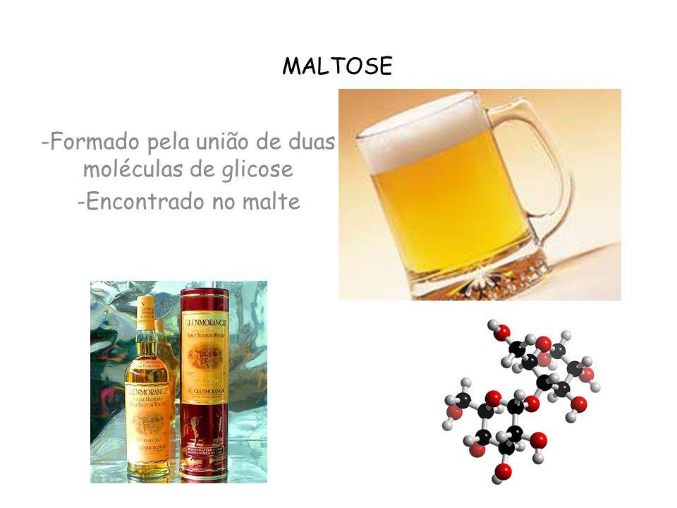 MALTOSE -Formado pela união de duas moléculas de glicose -Encontrado no malte