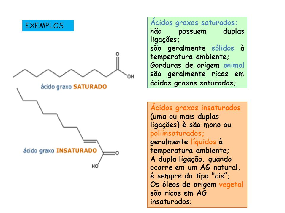 Ácidos graxos saturados: não possuem duplas ligações; são geralmente sólidos à temperatura ambiente; Gorduras de origem animal são geralmente ricas em