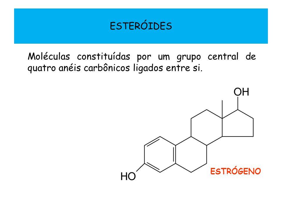 ESTERÓIDES Moléculas constituídas por um grupo central de quatro anéis carbônicos ligados entre si. ESTRÓGENO