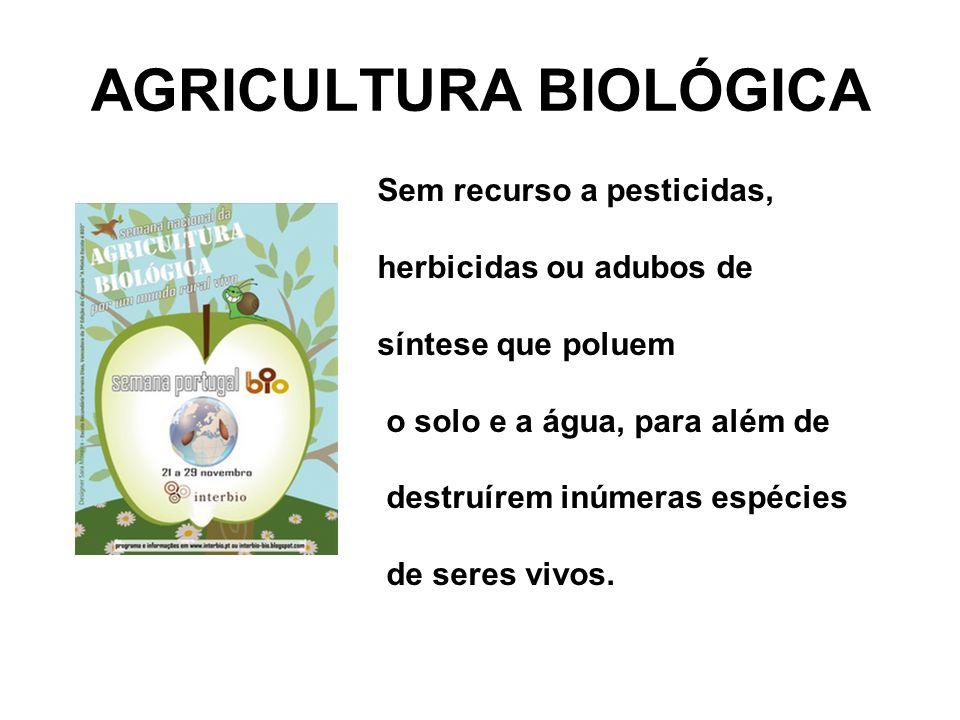 AGRICULTURA BIOLÓGICA Sem recurso a pesticidas, herbicidas ou adubos de síntese que poluem o solo e a água, para além de destruírem inúmeras espécies