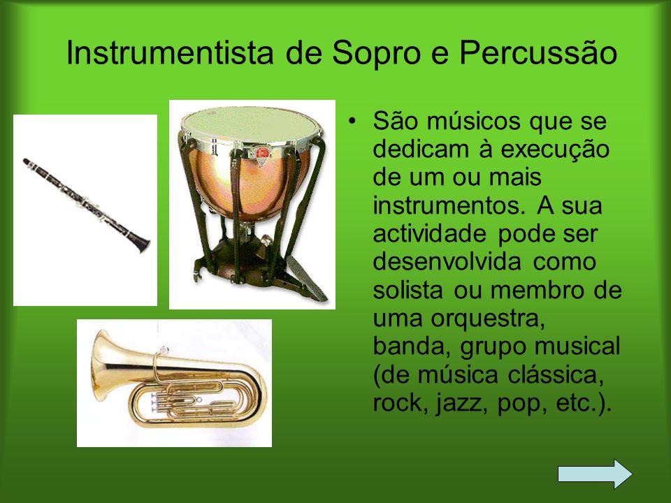 Instrumentista de Sopro e Percussão São músicos que se dedicam à execução de um ou mais instrumentos. A sua actividade pode ser desenvolvida como soli