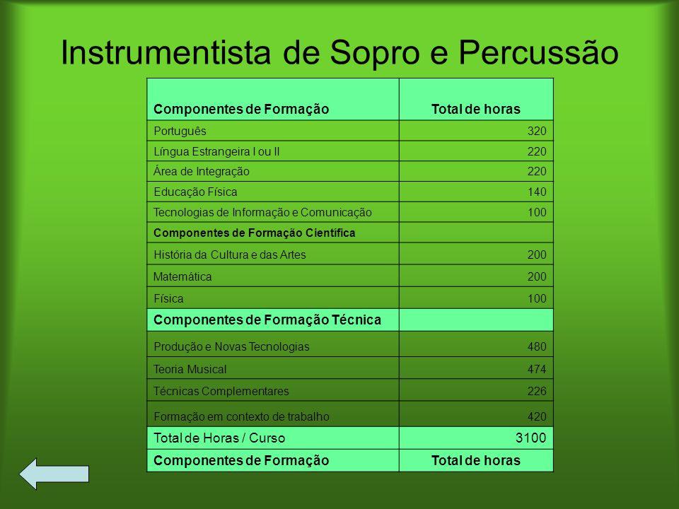 Instrumentista de Sopro e Percussão Componentes de FormaçãoTotal de horas Português320 Língua Estrangeira I ou II220 Área de Integração220 Educação Fí