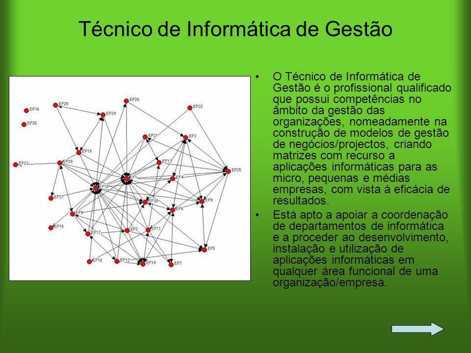Técnico de Informática de Gestão O Técnico de Informática de Gestão é o profissional qualificado que possui competências no âmbito da gestão das organ