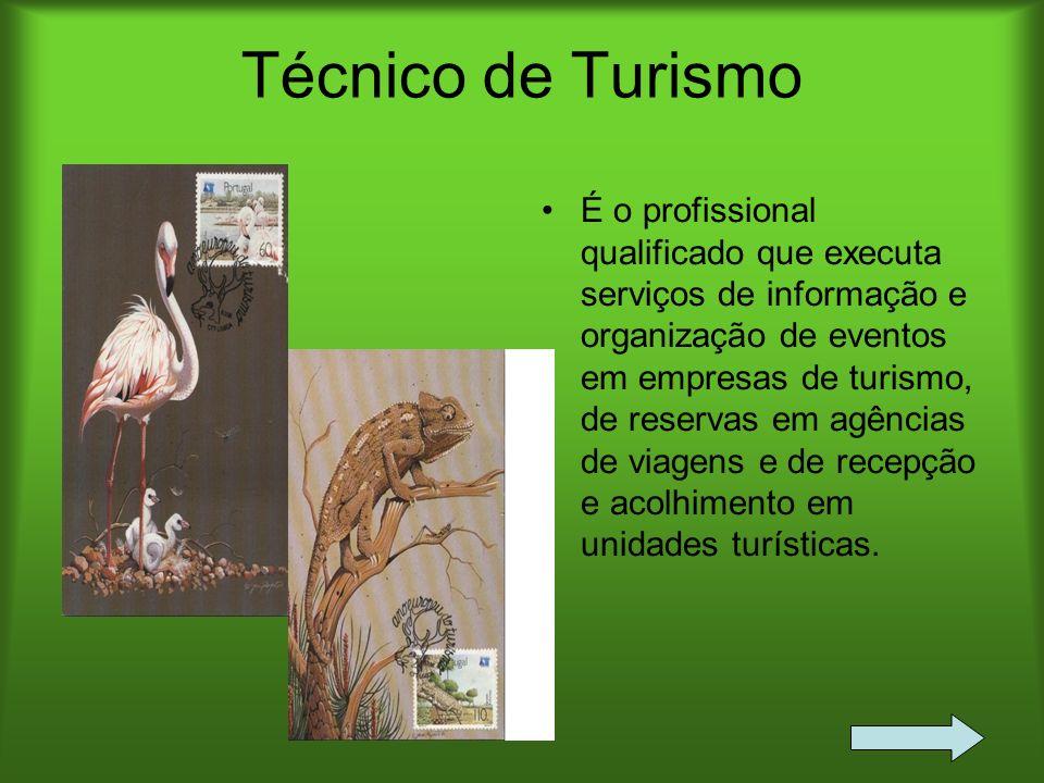 Técnico de Turismo É o profissional qualificado que executa serviços de informação e organização de eventos em empresas de turismo, de reservas em agê