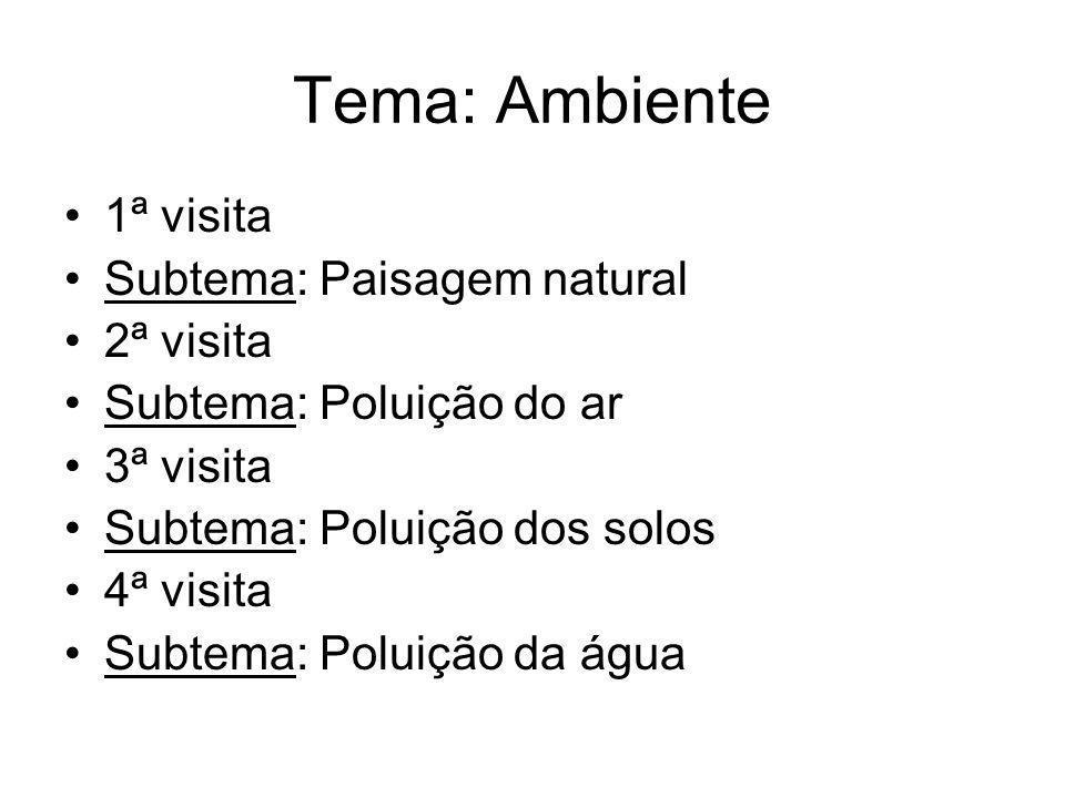 Tema: Ambiente 1ª visita Subtema: Paisagem natural 2ª visita Subtema: Poluição do ar 3ª visita Subtema: Poluição dos solos 4ª visita Subtema: Poluição