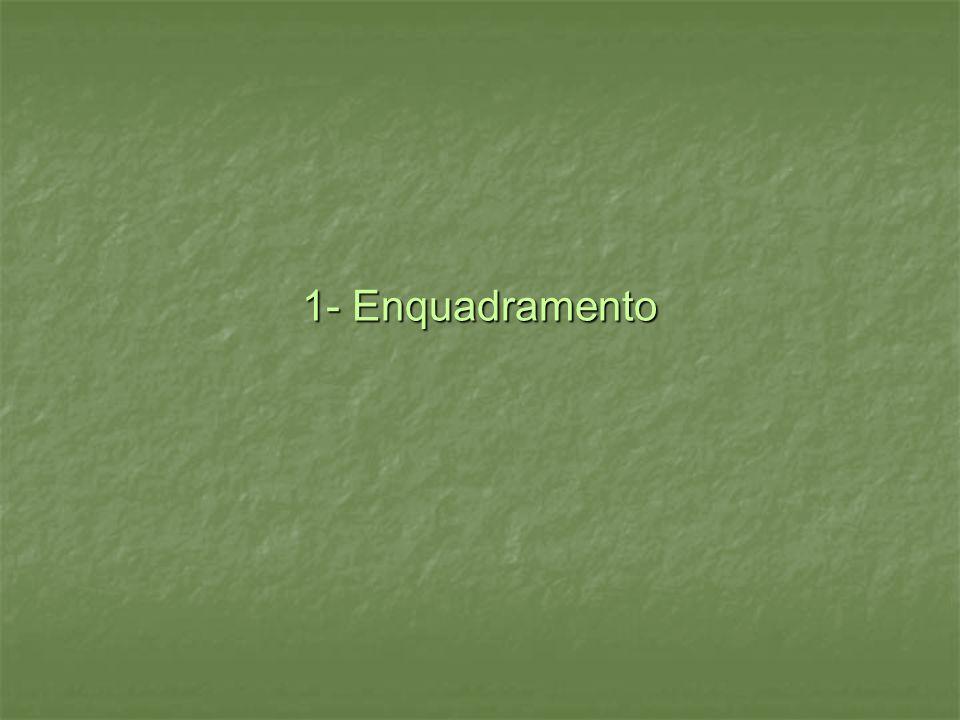 1- Enquadramento 1- Enquadramento