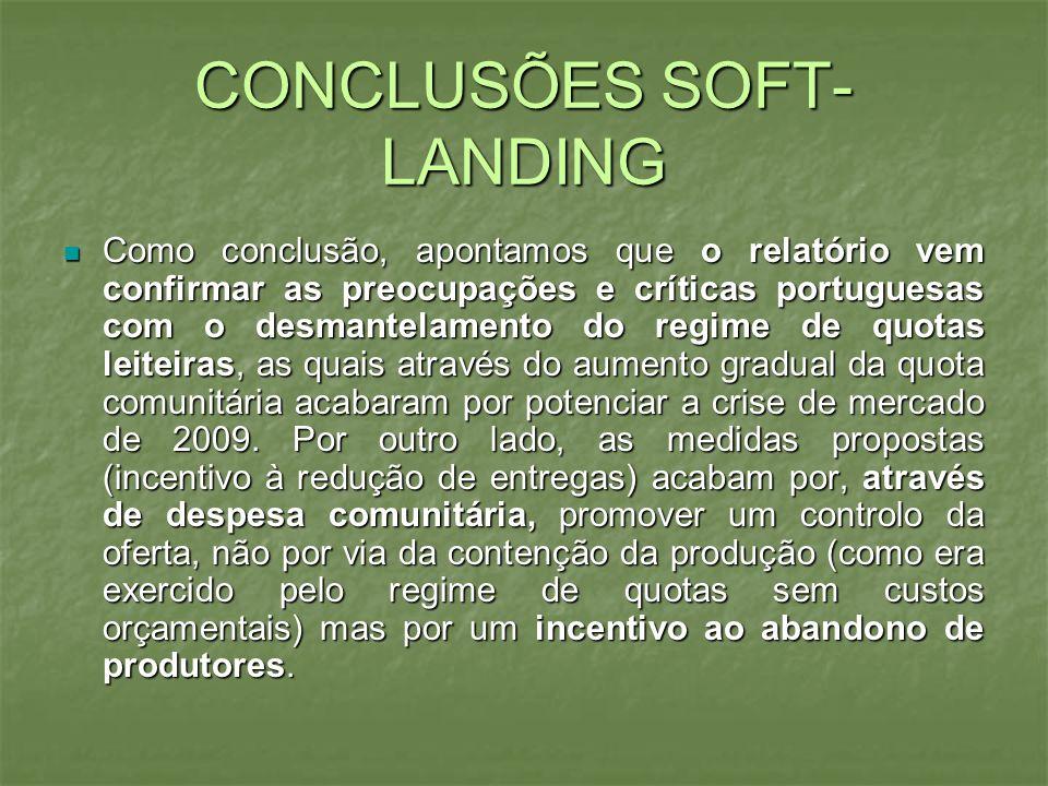 CONCLUSÕES SOFT- LANDING Como conclusão, apontamos que o relatório vem confirmar as preocupações e críticas portuguesas com o desmantelamento do regim