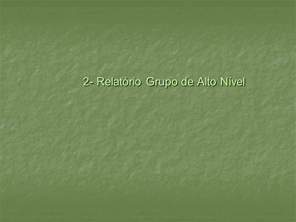 2- Relatório Grupo de Alto Nível 2- Relatório Grupo de Alto Nível