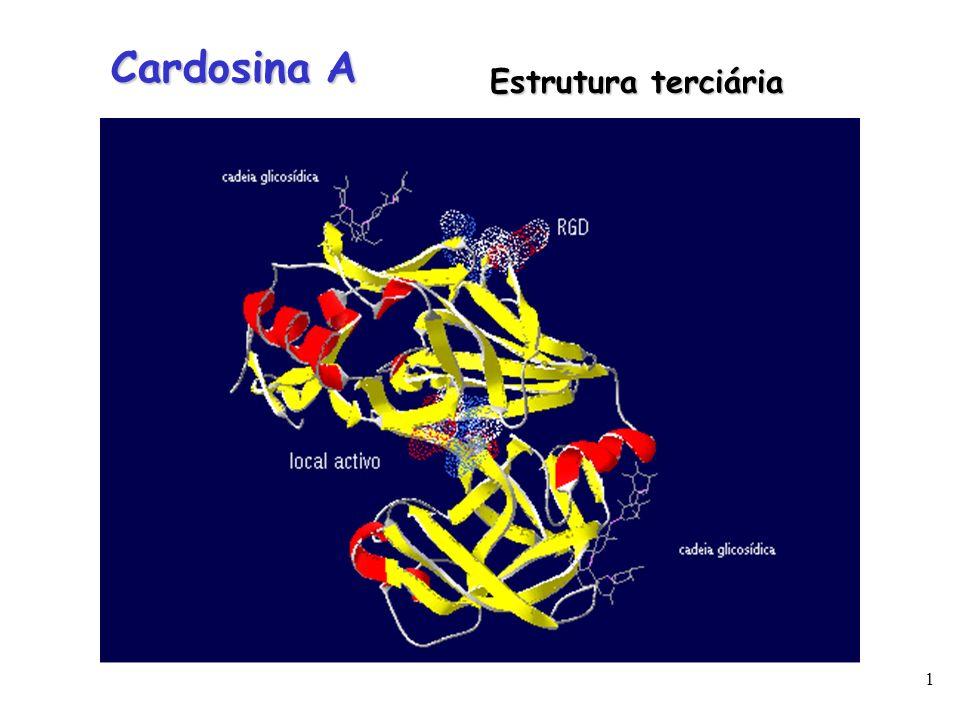 2 Precursor Intermediário Cardosina A madura Modelo proposto para o processamento proteolítico da Cardosina A.