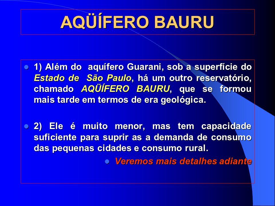 AQÜÍFERO BAURU 1) Além do aquífero Guarani, sob a superfície do Estado de São Paulo, há um outro reservatório, chamado AQÜÍFERO BAURU, que se formou mais tarde em termos de era geológica.
