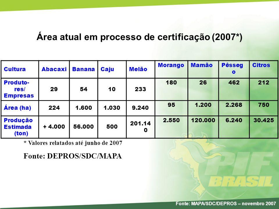 Área atual em processo de certificação (2007*) CulturaAbacaxiBananaCajuMelão MorangoMamãoPêsseg o Citros Produto- res/ Empresas 295410233 18026462212